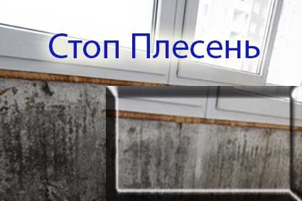 Плесень на балконе. эко службаnw, дезинфекция / дератизация .